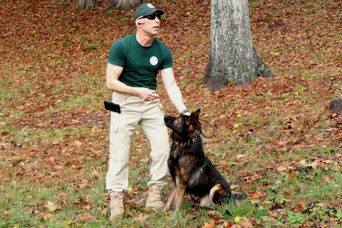 On the Scent: A New Approach to Tactical K9 Training ...