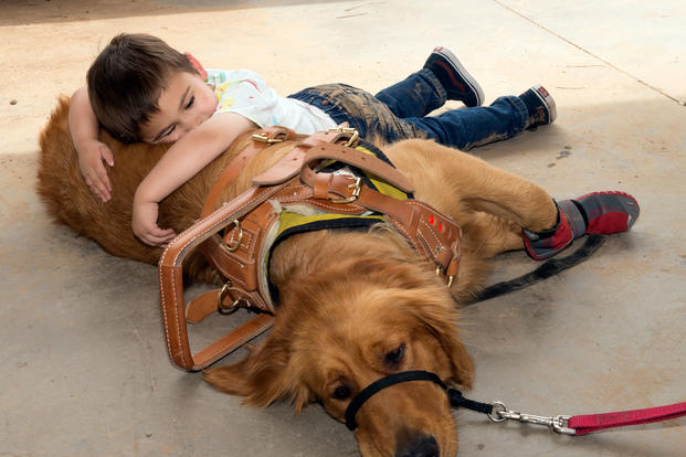 Hunter Codding, 4, bonds with his service dog, Indy, at Fowler Park on Luke Air Force Base, Ariz. (U.S. Air Force/Clinton Atkins)