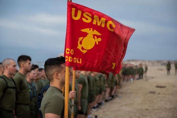 Marines hold the Marine Corps flag.