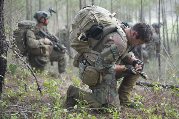 MARSOC Officers training in a forest.