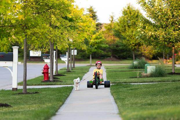 boy in suburbs with dog