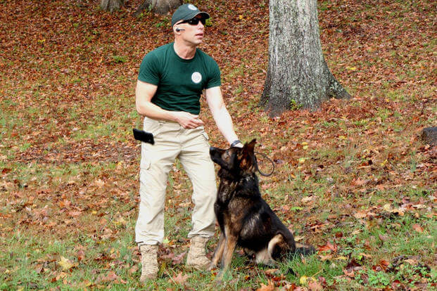 Shawn Deehan, president and founder of Global Dynamic Security, prepares to send Bojar, a Czechoslovakian detection dog, on the hunt for Semtex explosive residue during a training demonstration on the GDS wooded compound near Fredericksburg, Virginia.
