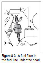 Figure 8-3: A fuel filter in the fuel line under the hood.