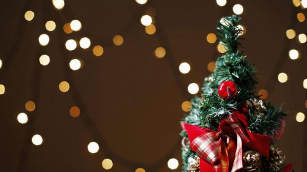 free christmas trees for military families - Free Christmas Tree