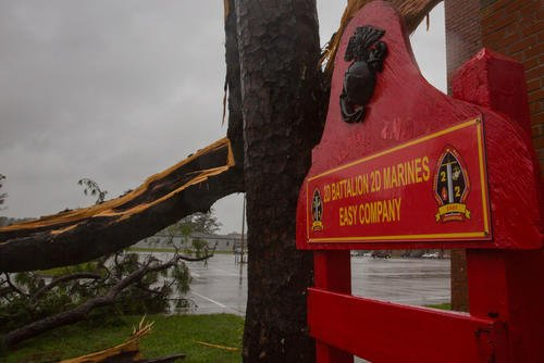 A tree collapsed outside Easy Company, 2nd Battalion, 2nd Marines, during Hurricane Florence, on Marine Corps Base Camp Lejeune, Sept. 15, 2018. Hurricane Florence impacted MCB Camp Lejeune and Marine Corps Air Station New River with periods of strong winds, heavy rains, flooding of urban and low lying areas, flash floods and coastal storm surges. (U.S. Marine Corps photo/Isaiah Gomez)